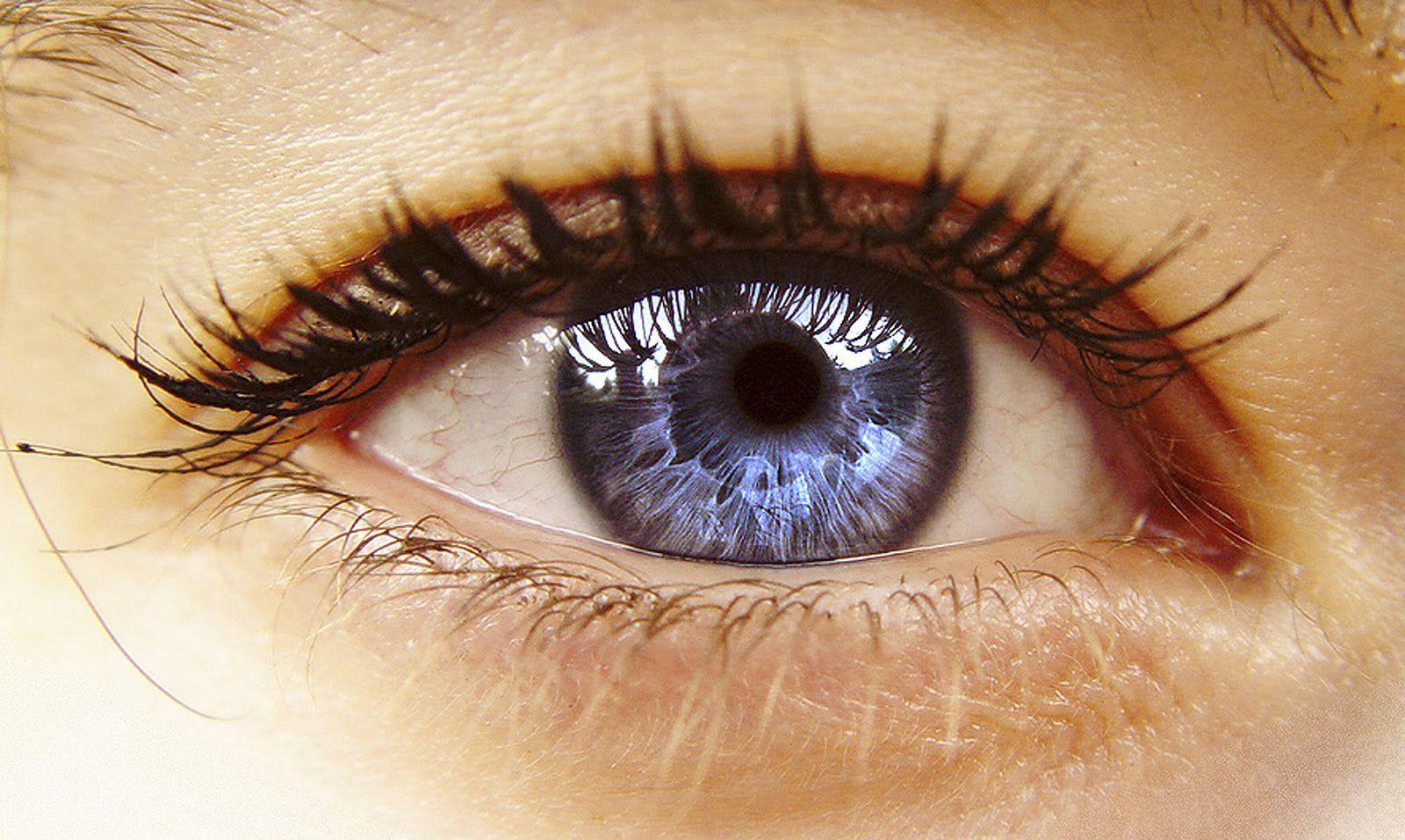Hogyan lehet csökkenteni a legyeket a szem előtt